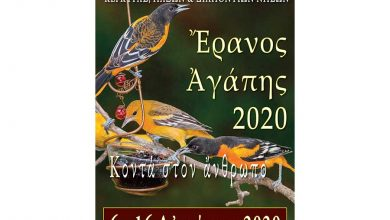 Photo of Έρανος Αγάπης 2020